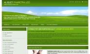 Webdesign: firemni-sablona-2